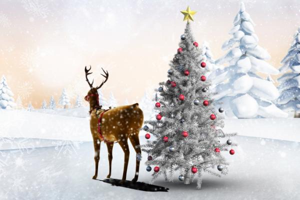 2018圣诞节送什么礼物最好 2018圣诞节礼物大全