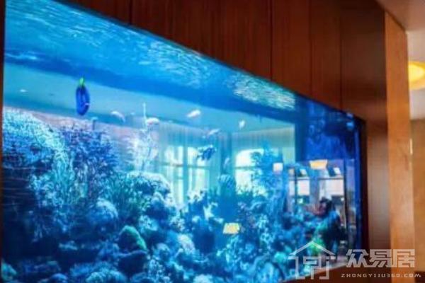 厦门家居鱼缸装饰效果图 超新奇家居鱼缸装饰图片