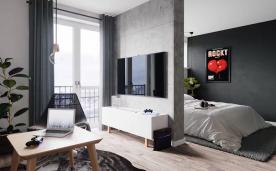 小户型青年公寓风格装修案例效果
