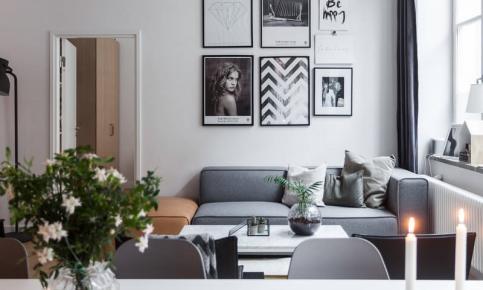 女孩的性冷淡生活家居 黑白灰主题风格公寓效果图欣赏