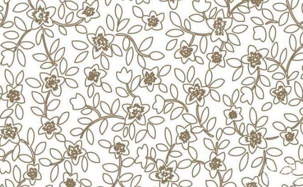 温州赛卓装饰给你讲讲墙衣和墙纸的来历