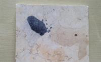 大理石板面腐蚀污染现象与防治措施
