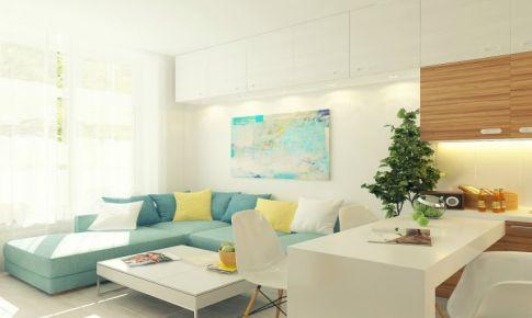 29平米简约风公寓装修案例 蜗居变豪宅