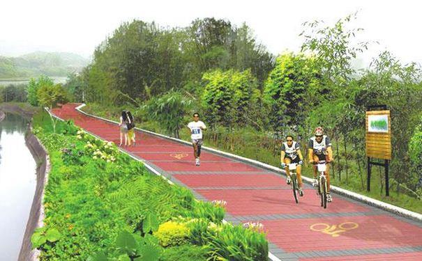成都龙泉驿区今年将新建100公里城市绿道