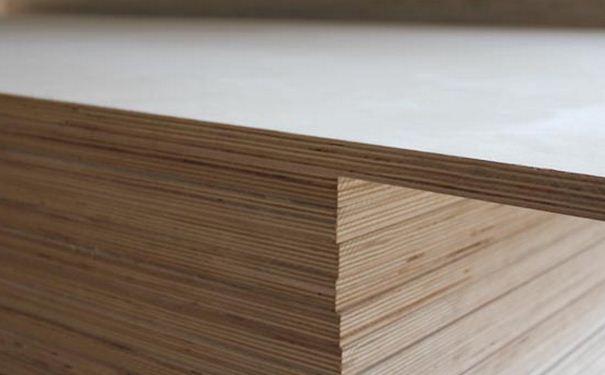 杨木胶合板怎么样 杨木胶合板的价格